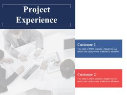 Project Experience Ppt Powerpoint Presentation File Gallery