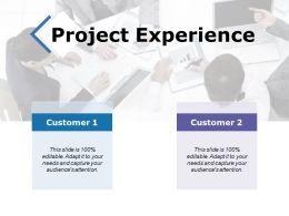 Project Experience Ppt Powerpoint Presentation File Templates
