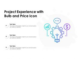 Project Experience With Bulb And Price Icon