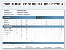 Project Feedback Form For Assessing Team Performance