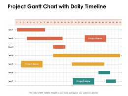 Project Gantt Chart With Daily Timeline Ppt Powerpoint Presentation Styles Graphics