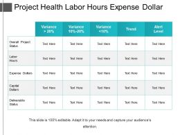 Project Health Labor Hours Expense Dollar