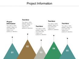 Project Information Ppt Powerpoint Presentation Infographic Template Design Templates Cpb