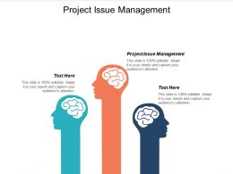 Project Issue Management Ppt Powerpoint Presentation Infographic Template Deck Cpb