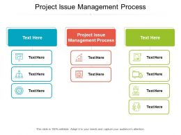 Project Issue Management Process Ppt Powerpoint Presentation Slides Vector Cpb