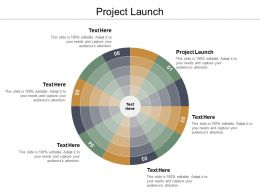 Project Launch Ppt Powerpoint Presentation Model Example Introduction Cpb