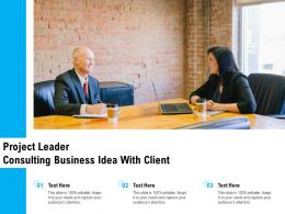 Project Leader Consulting Business Idea With Client