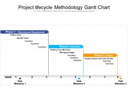 Project Lifecycle Methodology Gantt Chart