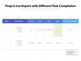Project List Report With Different Task Completion