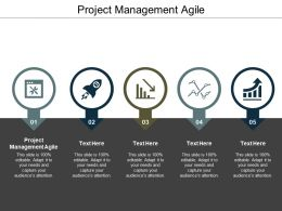 Project Management Agile Ppt Powerpoint Presentation Styles Slides Cpb