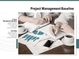 Project Management Baseline Ppt Powerpoint Presentation Portfolio Example Topics Cpb