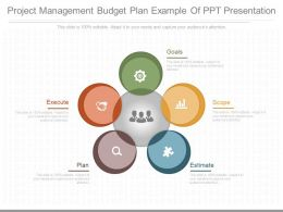 Project Management Budget Plan Example Of Ppt Presentation