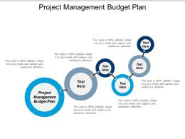 Project Management Budget Plan Ppt Powerpoint Presentation Gallery Graphics Cpb