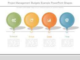 Project Management Budgets Example Powerpoint Shapes