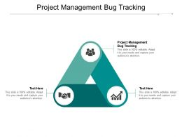 Project Management Bug Tracking Ppt Powerpoint Presentation Pictures Example Cpb