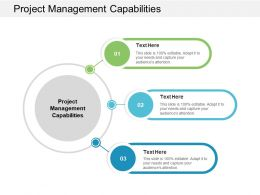 Project Management Capabilities Ppt Powerpoint Presentation Maker Cpb