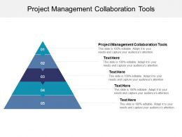 Project Management Collaboration Tools Ppt Powerpoint Presentation Model Ideas Cpb