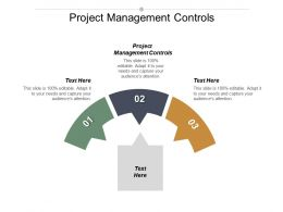 Project Management Controls Ppt Powerpoint Presentation Infographic Template Design Templates Cpb
