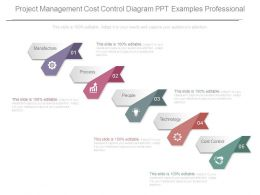 Project Management Cost Control Diagram Ppt Examples Professional