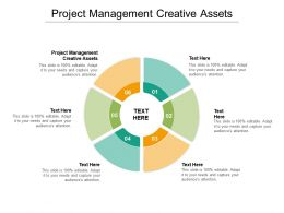 Project Management Creative Assets Ppt Powerpoint Presentation Graphics Cpb
