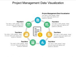 Project Management Data Visualization Ppt Powerpoint Presentation Gallery Backgrounds Cpb