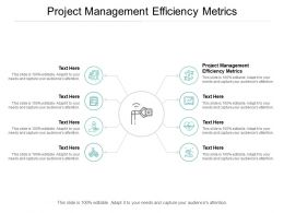 Project Management Efficiency Metrics Ppt Powerpoint Presentation Maker Cpb