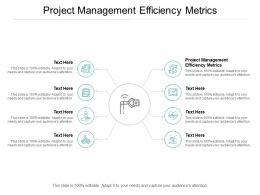 Project Management Efficiency Metrics Ppt Powerpoint Presentation Maker Cpb