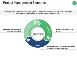 Project Management Elements Ppt Styles Icons