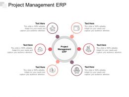 Project Management ERP Ppt Powerpoint Presentation Infographics Graphics Cpb