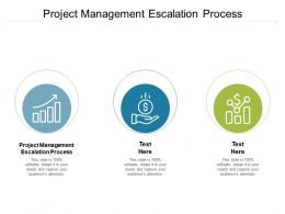 Project Management Escalation Process Ppt Powerpoint Presentation Ideas Designs Cpb