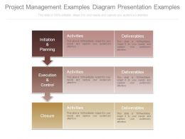 Project Management Examples Diagram Presentation Examples