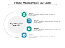 Project Management Flow Chart Ppt Powerpoint Presentation Pictures Ideas Cpb