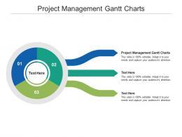 Project Management Gantt Charts Ppt Powerpoint Presentation File Mockup Cpb