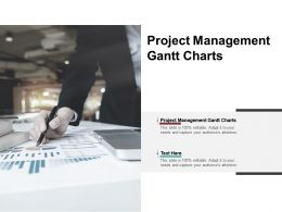 Project Management Gantt Charts Ppt Powerpoint Presentation Styles Grid Cpb