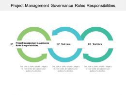 Project Management Governance Roles Responsibilities Ppt Powerpoint Presentation Infographic Template Outfit Cpb