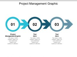 Project Management Graphic Ppt Powerpoint Presentation Slides Layout Cpb