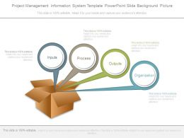 Project Management Information System Template Powerpoint Slide Background Picture