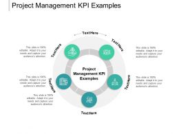 Project Management KPI Examples Ppt Powerpoint Presentation Layouts Cpb