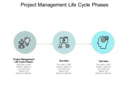 Project Management Life Cycle Phases Ppt Powerpoint Presentation Layouts Cpb