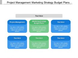 Project Management Marketing Strategy Budget Plans Campaign Promotion Plans