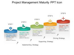 Project Management Maturity Ppt Icon