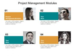 Project Management Modules Ppt Powerpoint Presentation Gallery Infographics Cpb