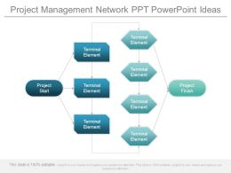 Project Management Network Ppt Powerpoint Ideas
