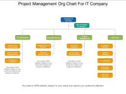 Project Management Org Chart For It Company