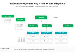 Project Management Org Chart For Risk Mitigation Infographic Template