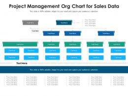 Project Management Org Chart For Sales Data Infographic Template