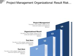 Project Management Organizational Result Risk Financial Identification Control Auditing