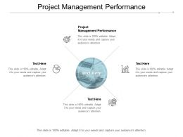 Project Management Performance Ppt Powerpoint Presentation Summary Ideas Cpb