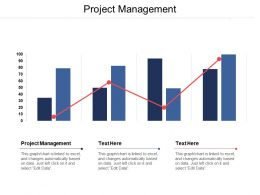 Project Management Ppt Powerpoint Presentation Gallery Model Cpb