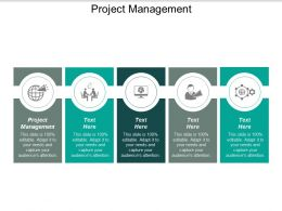 Project Management Ppt Powerpoint Presentation Layouts Maker Cpb